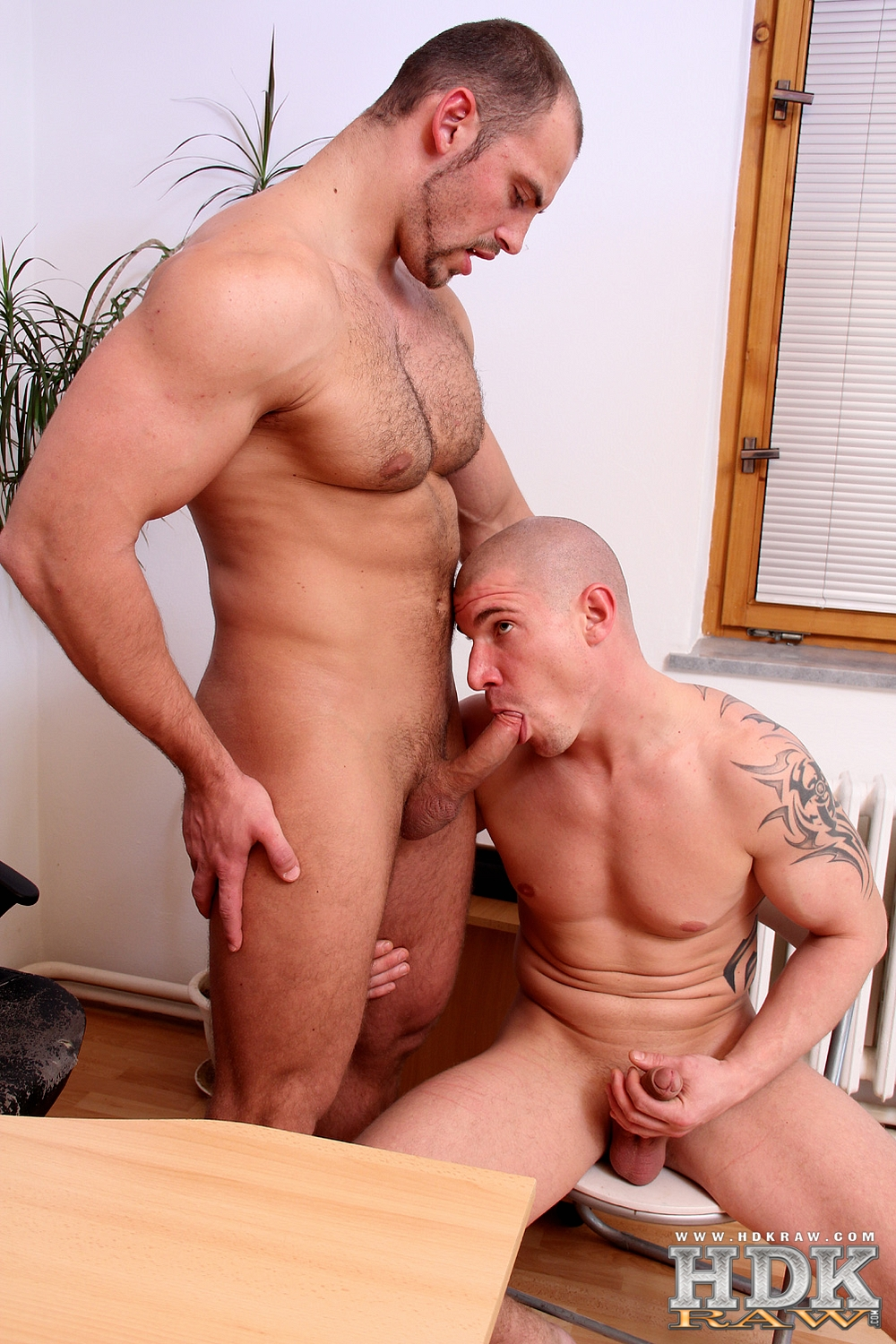 HDK-Raw-Creamin-Fit-Fuckers-Tomm-Max-Born-Muscle-Bareback-Amateur-Gay-Porn-09 Built Hairy Muscle Bear Fucks His Smooth Muscle Buddy Raw